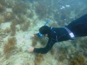 海底より一定量の砂を採取