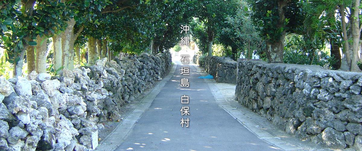 沖縄 石垣島 白保村